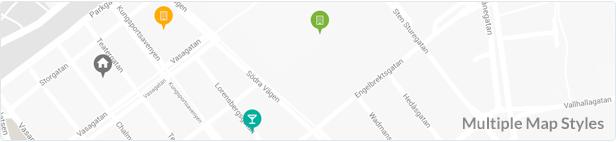 Multiple Google Maps Styles